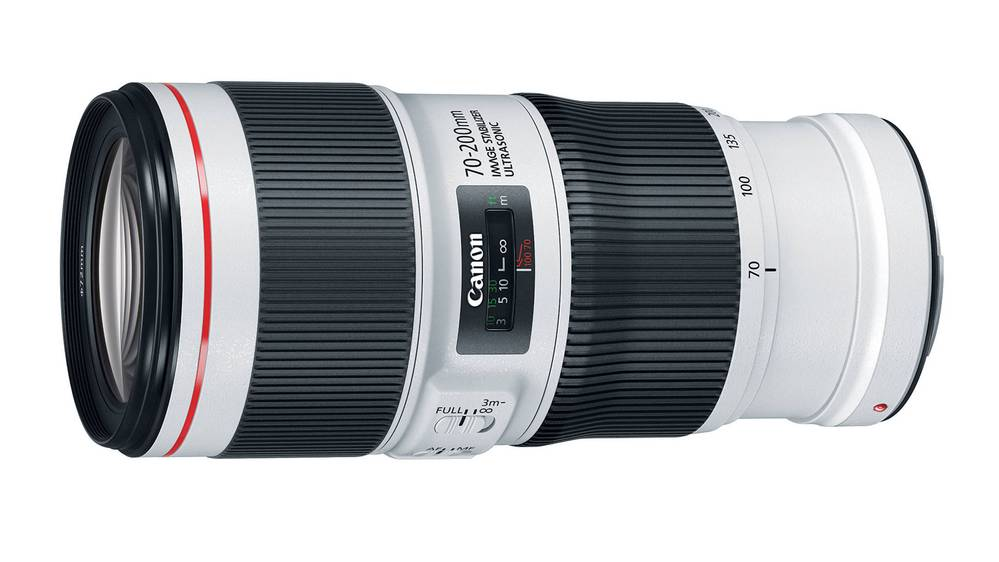 Best Telephoto Lenses for Canon DSLRs