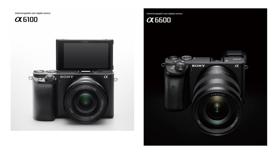 Full Features & Specs of Sony a6100 & a6600 Cameras