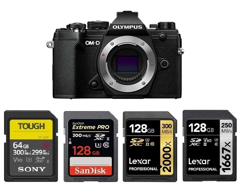 Best Memory Cards for Olympus OM-D E-M5 Mark III