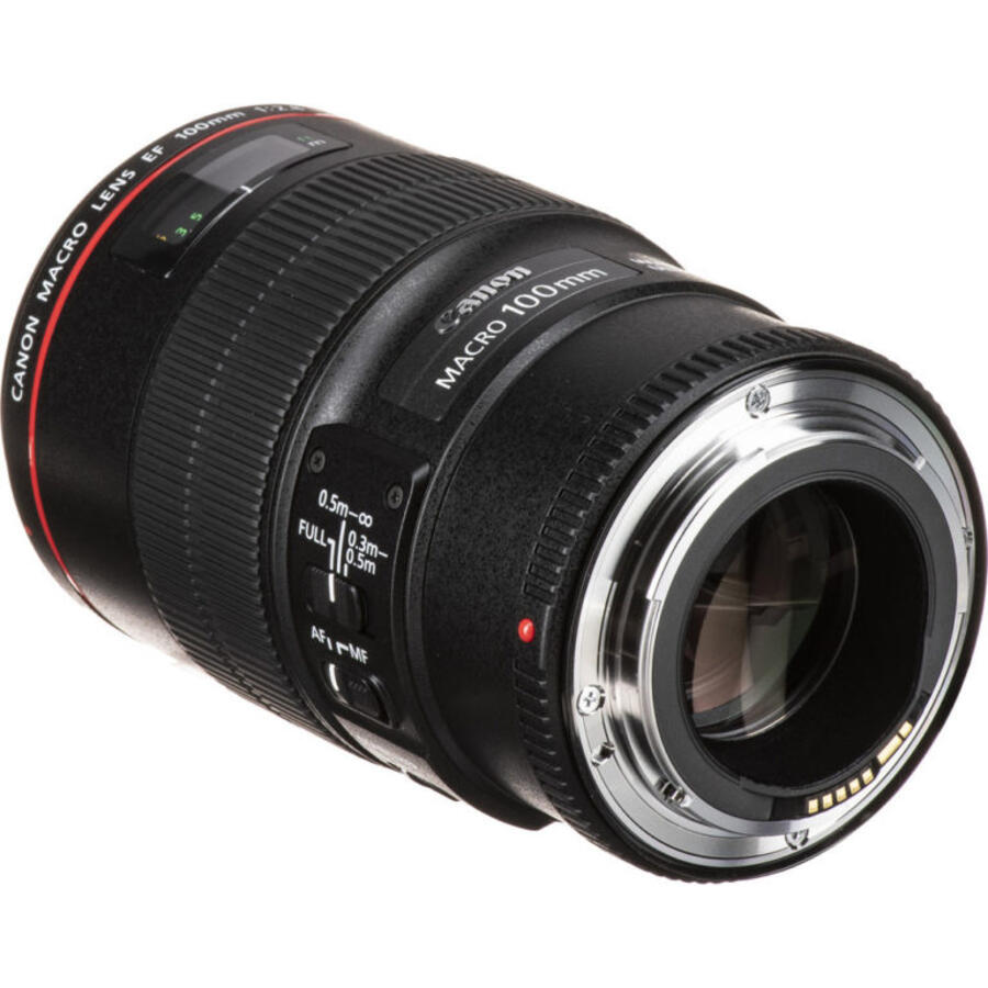Canon RF 600mm f/4L IS USM, RF 400mm f/2.8L IS USM and RF 100mm f/2.8L IS USM Macro Coming Soon