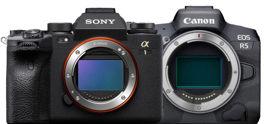 8K Video Comparison Between Sony Alpha 1 and Canon EOS R5